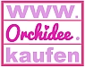 Orchidee.kaufen Logo